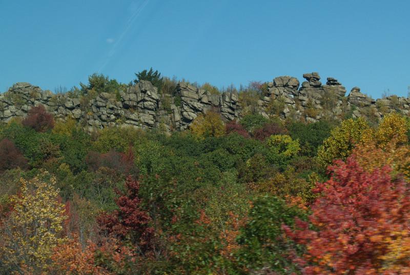 rocks & leaves along 476...