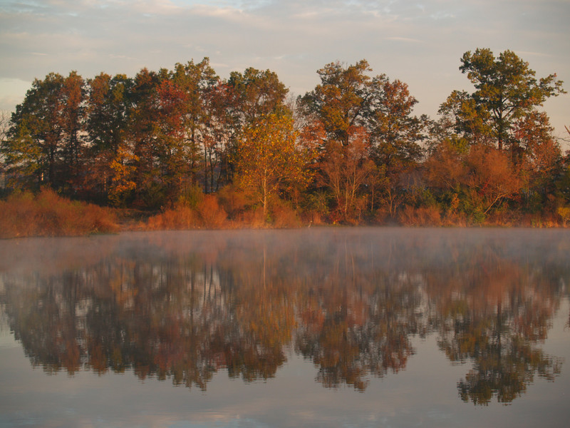 mist and reflections at the reservoir