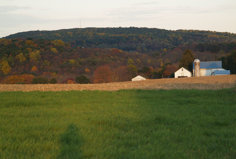 Farm near Springtown