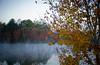 Autumn2751.jpg