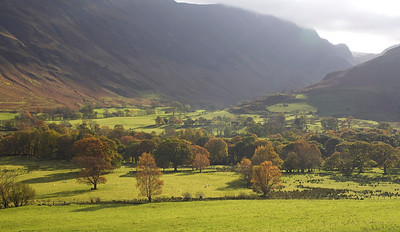 Autumn gold, Lake district