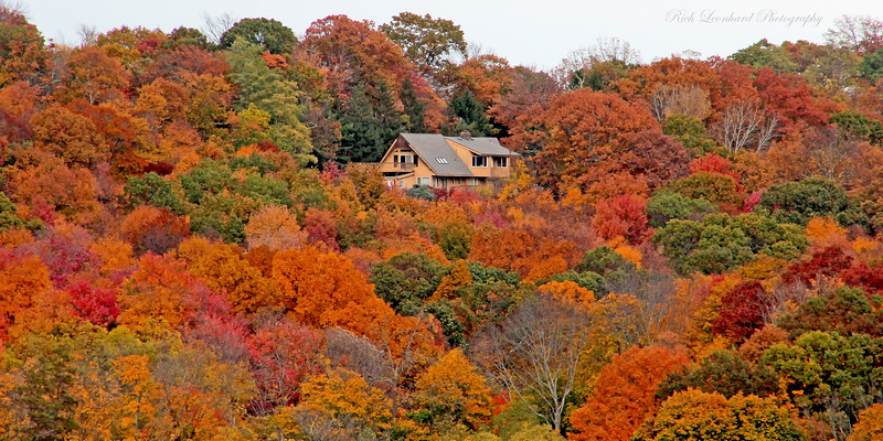 Fall foliage at Cold Spring Harbor.