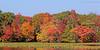 Mill Pond Fall foliage. Wantagh,NY.