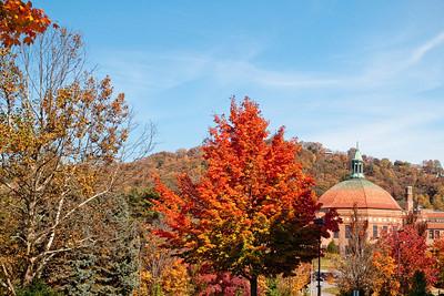 Asheville Fall019