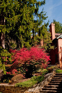 Asheville Fall015