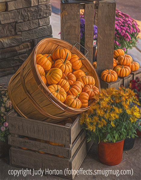 Autumn Gourd Display