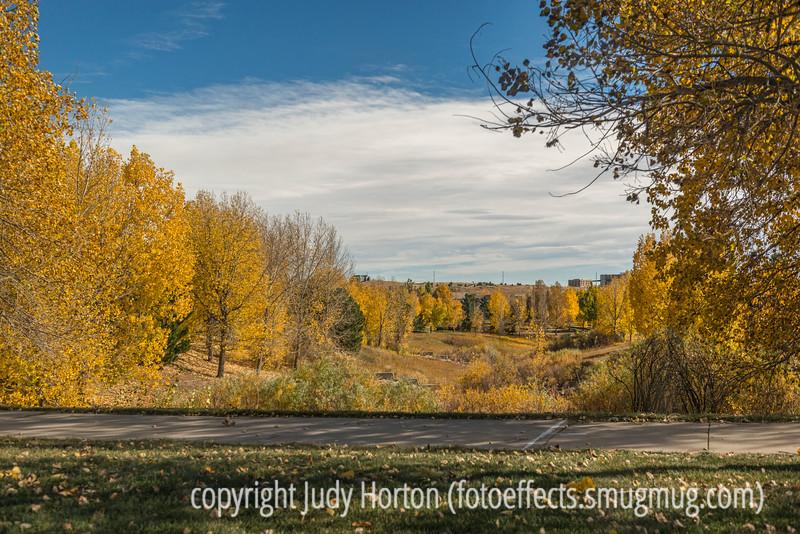 Autumn Afternoon in Colorado Springs