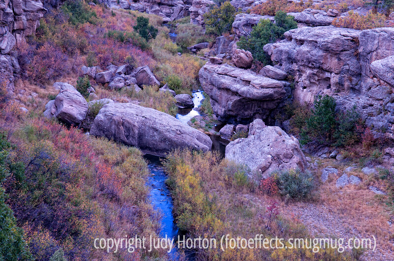 Autumn along Cherry Creek in Castlewood State Park in Colorado; best viewed in the larger sizes