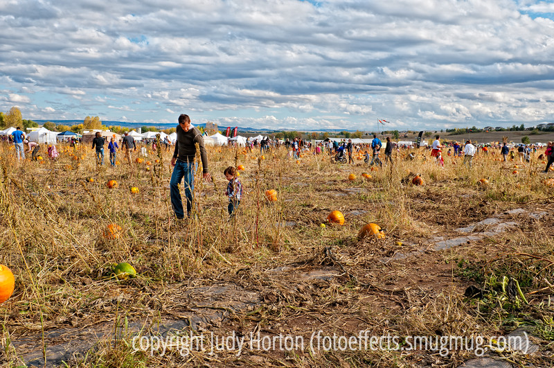 Pumpkin Festival at Chatfield Park; best viewed in the largest sizes