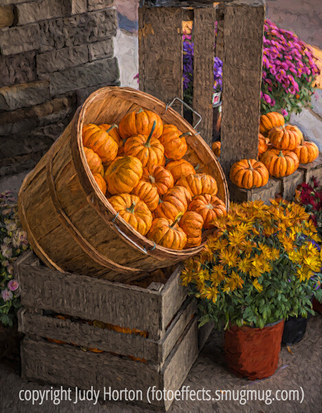 Autumn Gourd Display