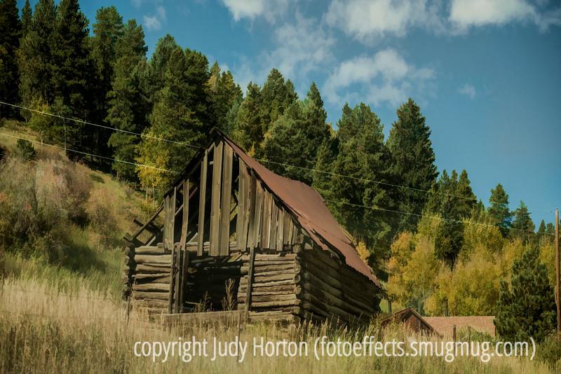 Autmn in Colorado