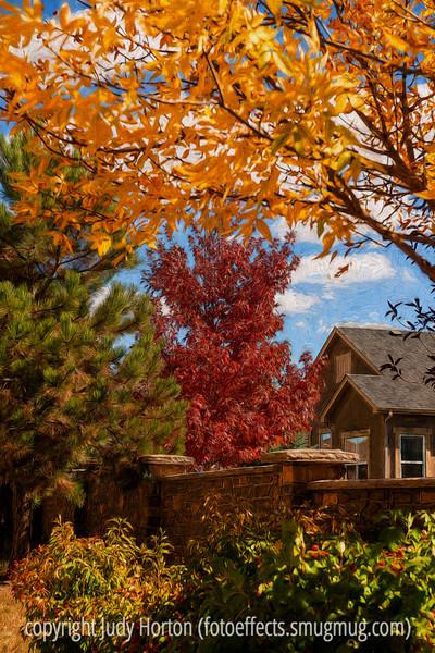 Autumn, Colorado Springs