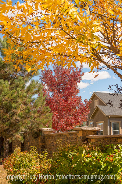 Autumn, Colorado Springs