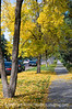 Autumn; best viewed in the largest sizes