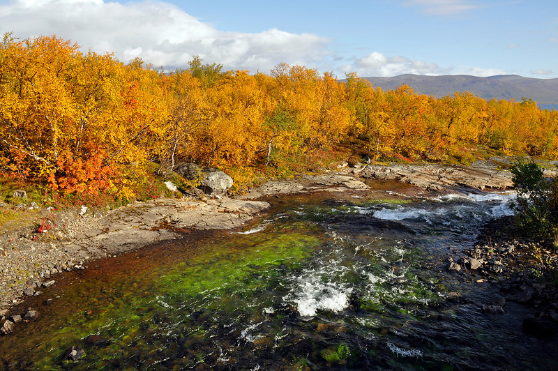Abisko Nationalpark in north of Sweden.