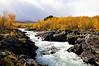 Autumn in Sweden : Welcome to Sweden National Park in Abisko.