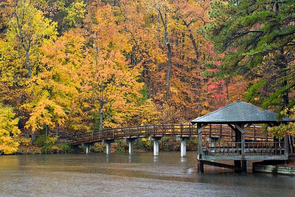 autumn-rain_2499511854_o
