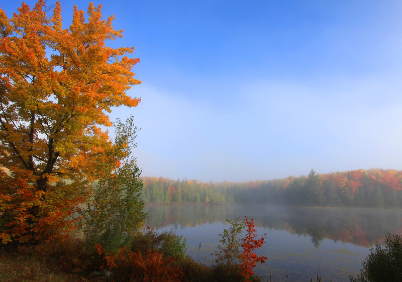 """ Sunrise at the Lake on a Foggy Autumn Morning ""  Boulder Junction Wisconsin"