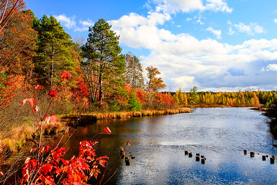 Autumn Colors on the River