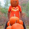 """Pumpkin Head and Family"""