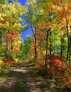 Autumns Back County Roads 2