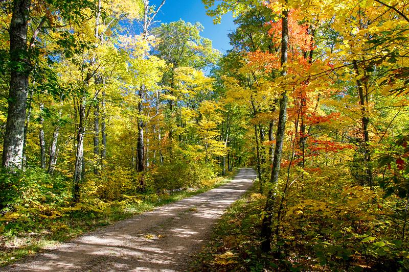 Breathtaking Walk to Frank Lake 1