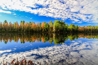 Autumn Dreamscape   3