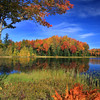 """Awesome Autumn"""