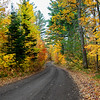 Autumn Roads - Nebish Lake Rd. 2