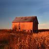 """Autumn Harvest Time"""