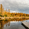 Golden Tamaracks at the High Lake Boat Landing 3