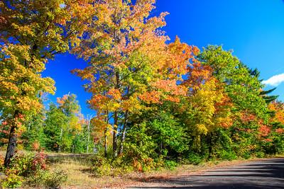 Framing Autumn  2