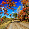 Autumn's Colorful Roads  4