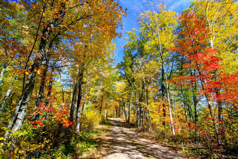 Autumn's Colorful Roads   2