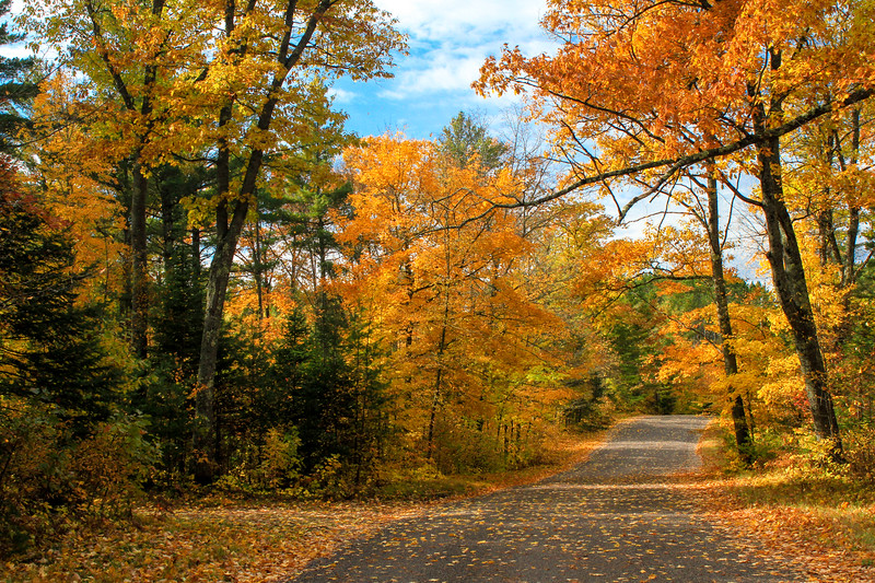Colorful Country Roads 11