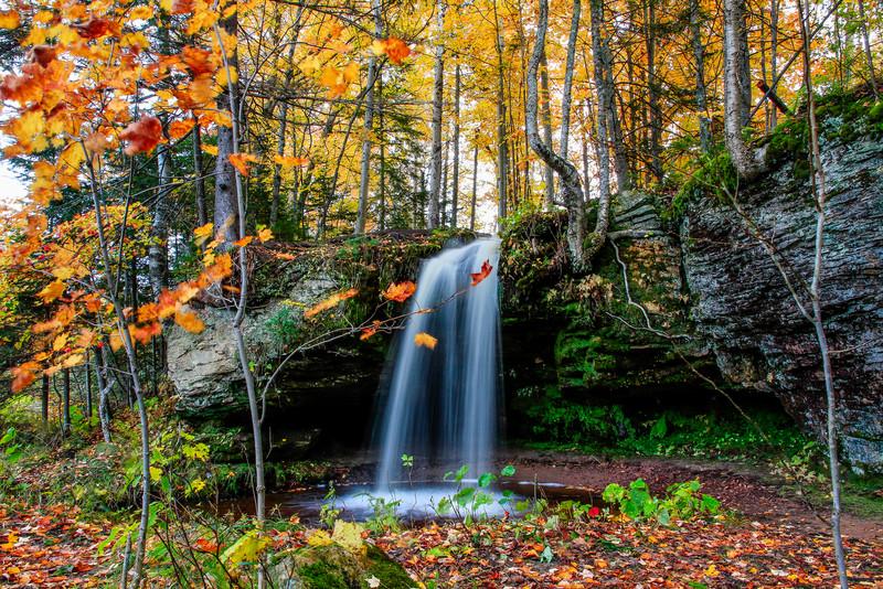 Autumn at Scott Falls