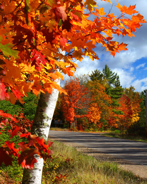 """""""Traveling the Roads of Autumn"""""""
