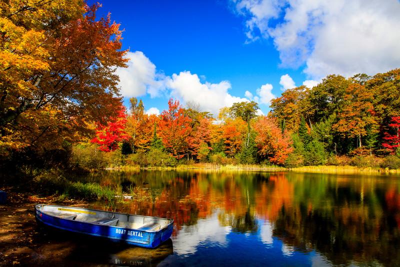 Take a Trip Into Autumn