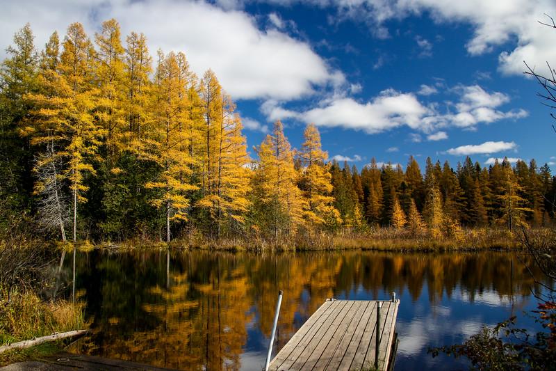 High Lake Golden Bonanza 5
