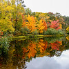 Autumn Color on the Manitowish 5