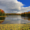 Autumn on Mabel Lake