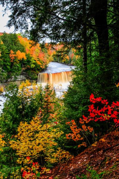 Fall at Tahquamenon Falls 3