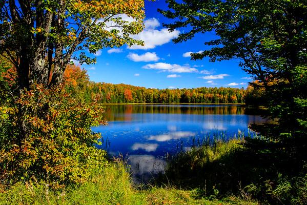 Autumn Exposure