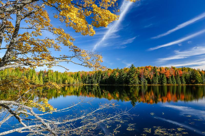Autumns Mirror Images