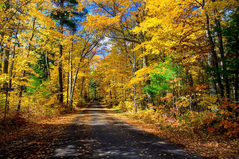 Autumn Roads - Big Muskellunge Lake Rd.