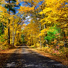 Autumn Roads - Big Muskellunge Lake Rd.