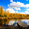 The Golden Shores of High Lake