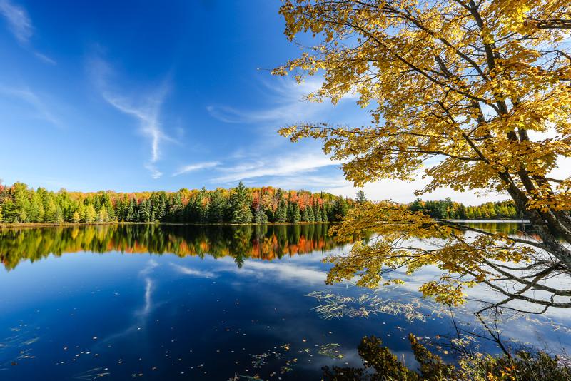 Autumn Takes Your Breath Away