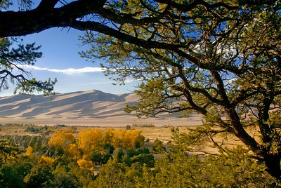 A trailside view of the Great Sand Dunes in autumn.