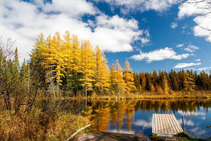 High Lake Golden Bonanza 4